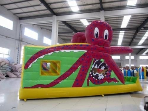 Octopus Combo